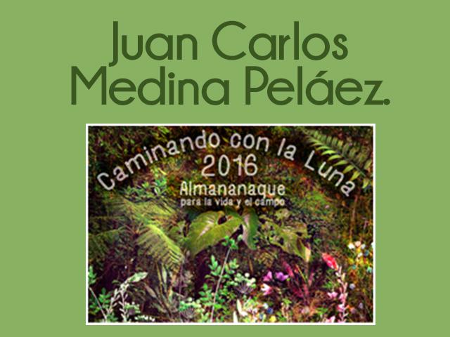 Juan Carlos Medina Peláez  – Coordinador